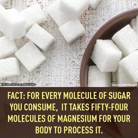 sugar-fact